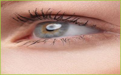 Retinal Transplant