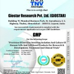 GMP Certification - GIOSTAR